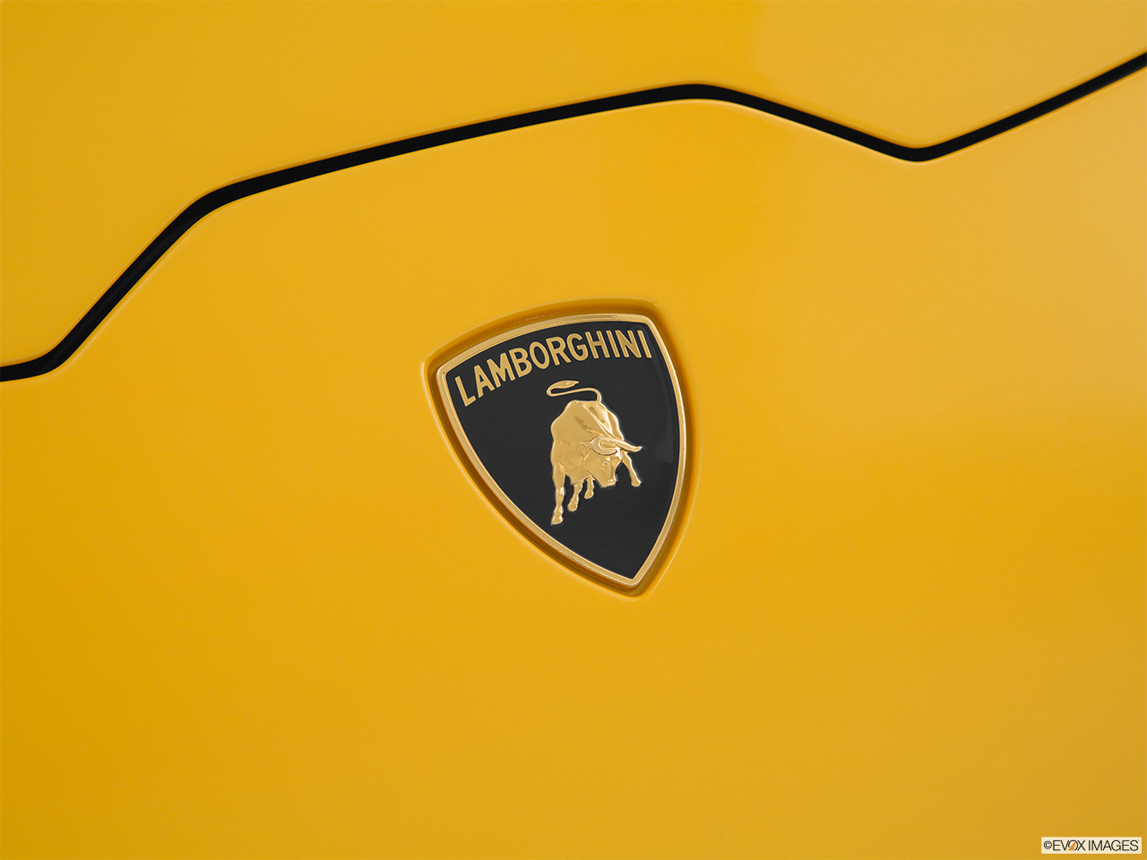 2015 Lamborghini Huracan LP 610-4 Rear manufacture badge/emblem