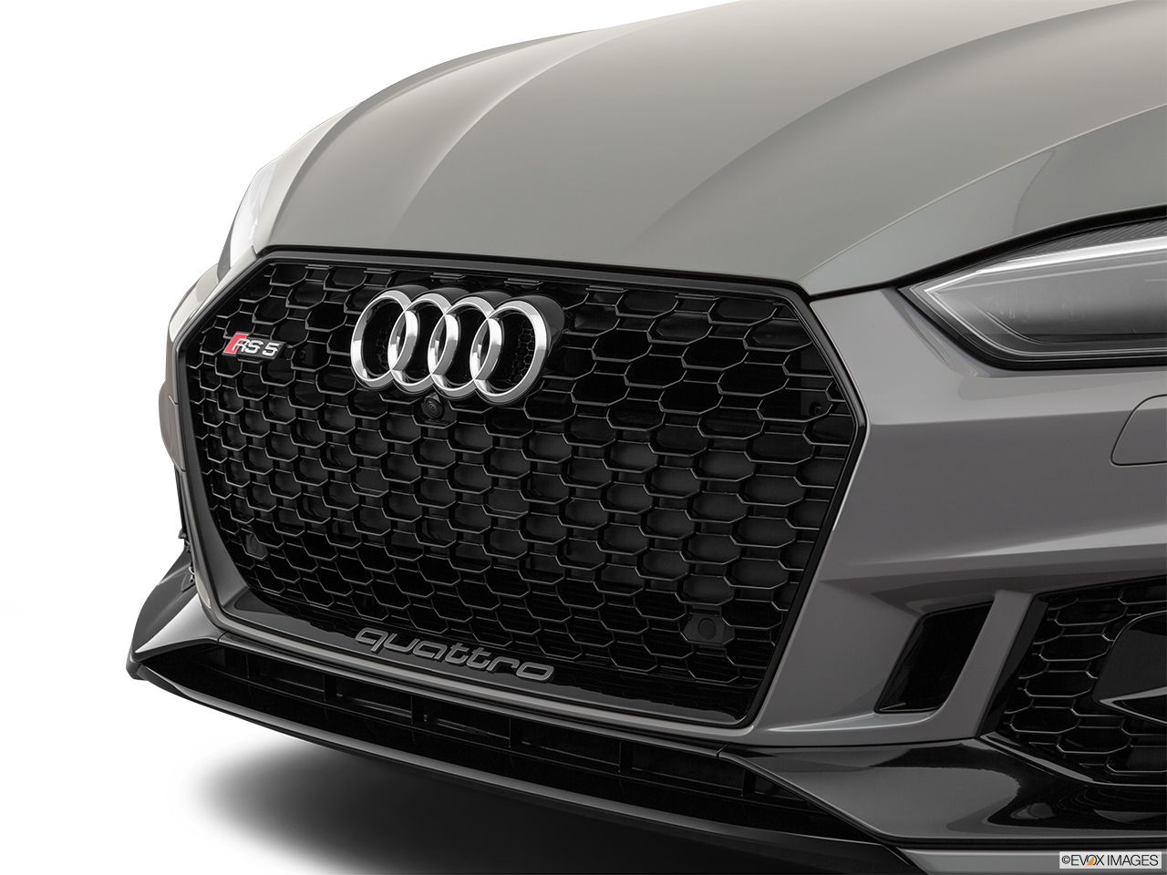 2019 Audi RS 5 Sportback 2.9 TFSI Close up of Grill.