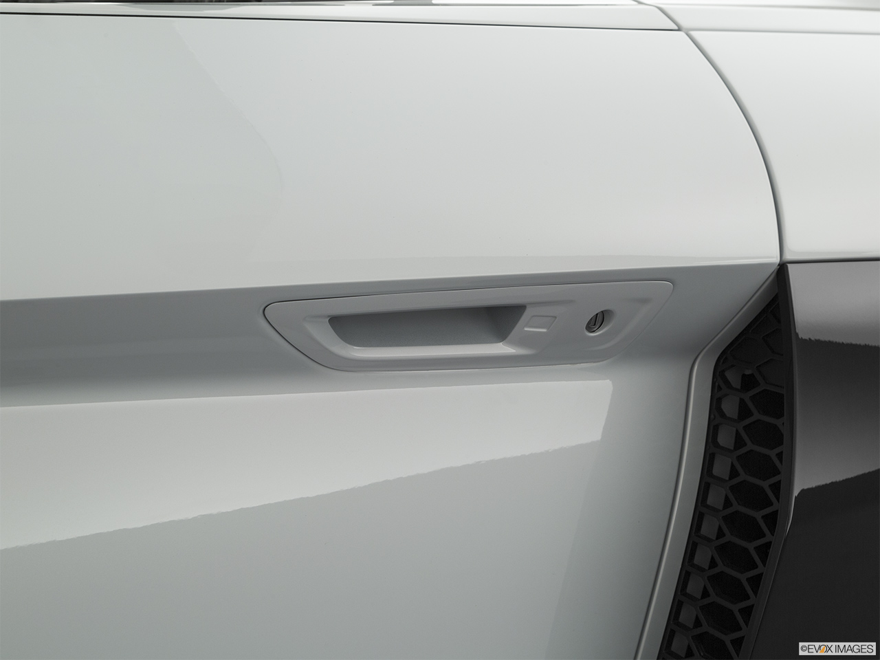 2020 Audi R8 Spyder V10 Drivers Side Door handle.